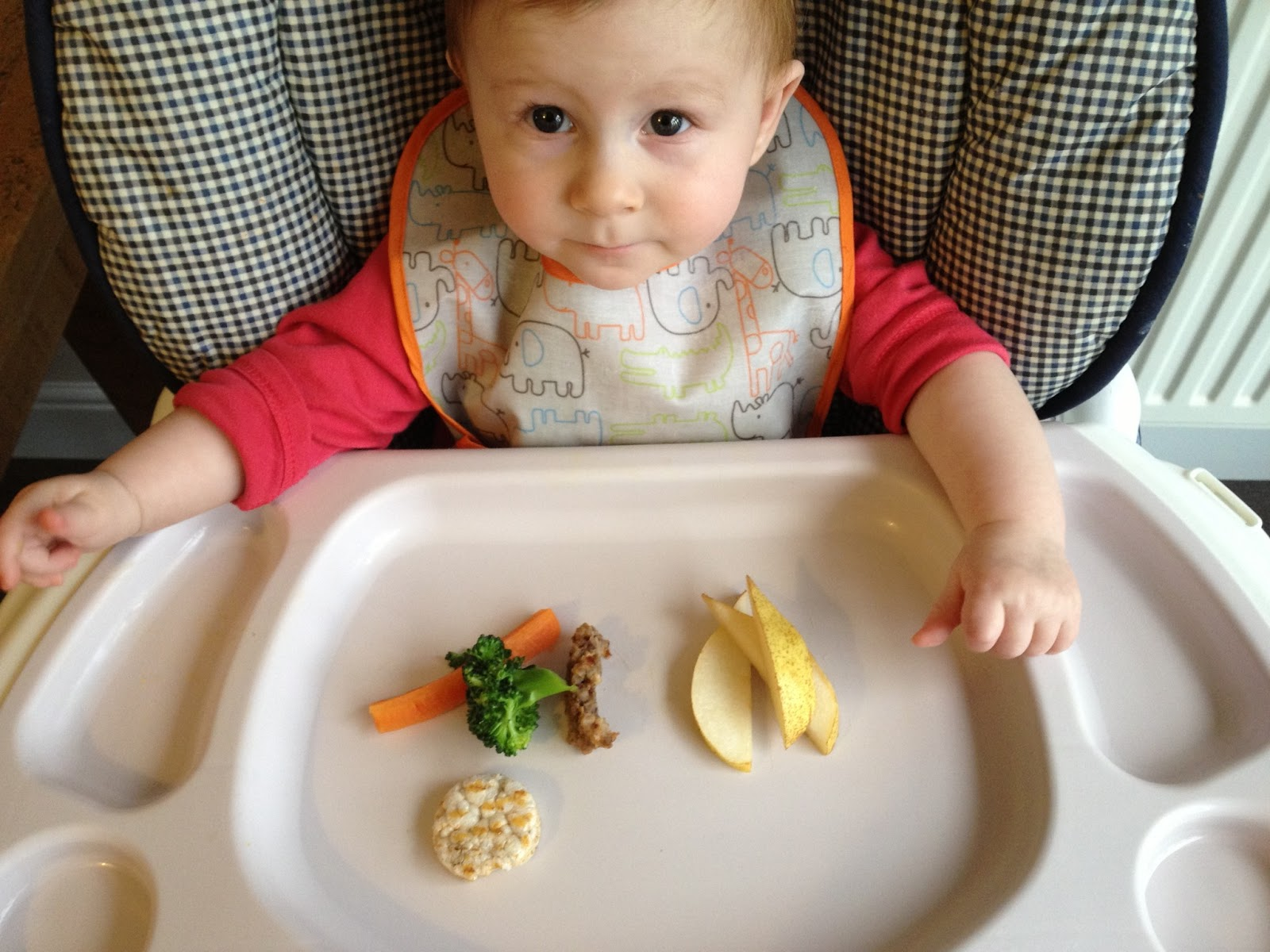 What Age Do Babies Start Food