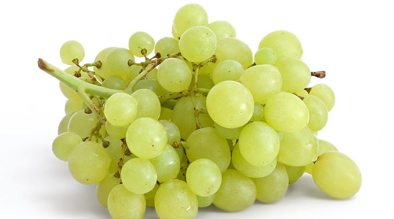 Can eat green grapes during pregnancy?